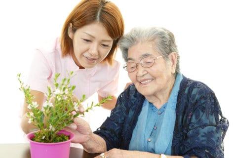 Four Benefits of Houseplants to Seniors