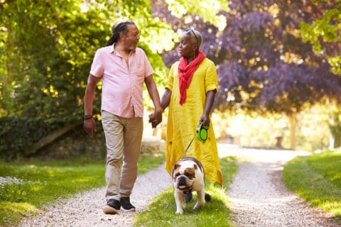 Pet Therapy: How It Is Beneficial to Seniors